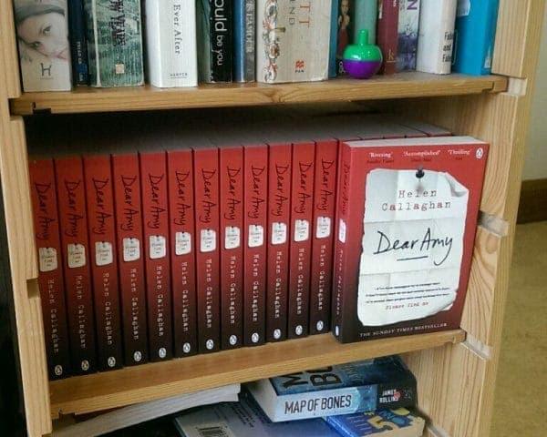 Penguin Random House Dear Amy Product Sampling