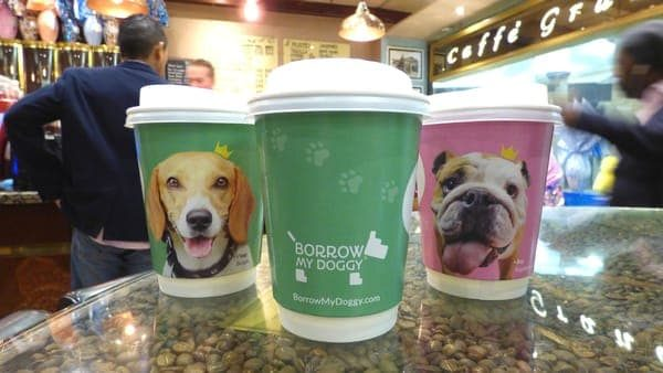 Borrow My Doggy Takeaway Coffee Cup Advertising