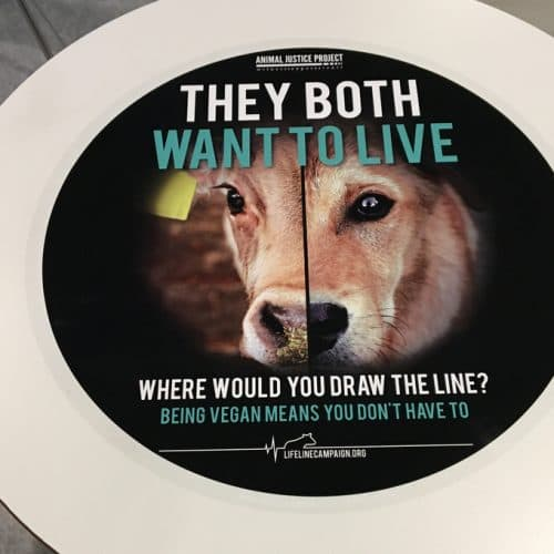 Animal Justice Lifeline Campaign Tablewrap Advertising