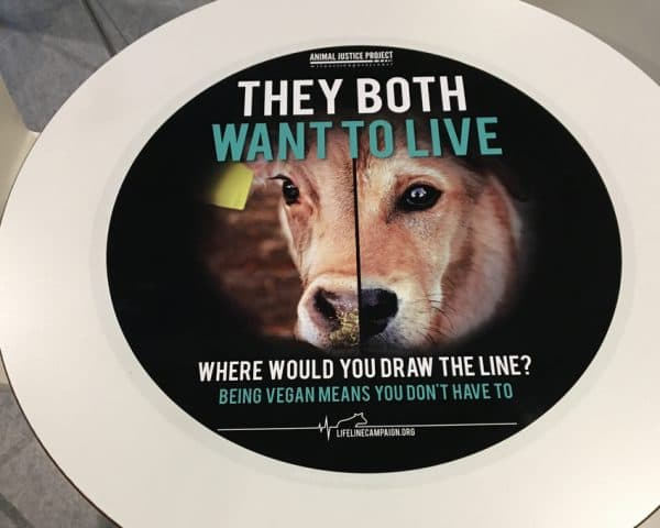 Animal Justice Lifeline Campaign Tablewrap Advertising